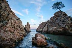 在岩石之间的方式 库存照片