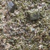 在岩石关闭的绿色绿帘石水晶 免版税库存照片