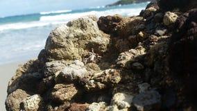 在岩石后的海滩 免版税图库摄影