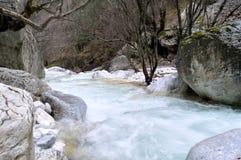 在岩石和光秃的树中的森林小河 免版税库存照片