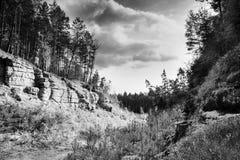 在岩石和杉木之间的晴朗的光在秋季Macha ` s在捷克共和国的Okna村庄附近环境美化 免版税库存图片