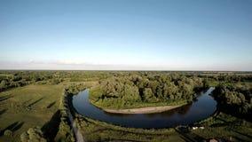 在岩石和森林中的一条河 免版税图库摄影