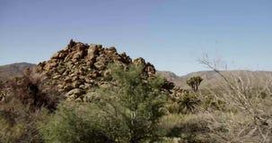 在岩石和desertic植物土气路的旅行的射击  影视素材