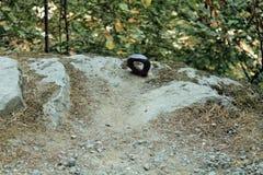 在岩石埋置的钢眼睛 免版税库存照片