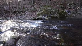 在岩石小河床下的怀特沃特旅行 股票录像