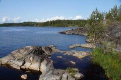 在岩石岸的桦树在一个清楚的晴朗的夏日 远离树木丛生的海岸 库存照片
