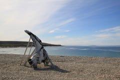 在岩石岸的鲸鱼骨头在Igloolik附近 免版税库存图片