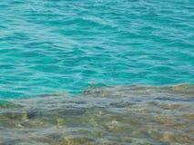 在岩石底部的透明的绿松石水 免版税库存图片