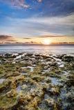 在岩石日落的海岸线 库存照片