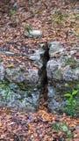 在岩石架子的裂缝裂痕 库存图片