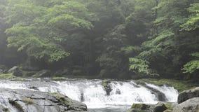 在岩石步的河 影视素材