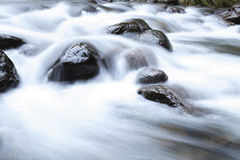 在岩石水 免版税库存图片