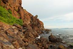 在岩石海岸的猴子 免版税图库摄影