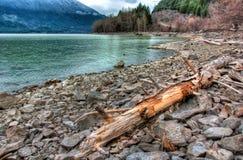 在岩石海岸线的日志湖边 库存照片