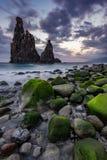 在岩石海岸II的日落 图库摄影