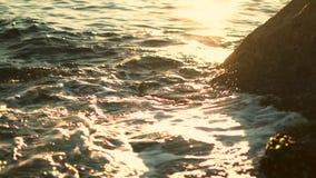 在岩石海滨,邦迪区海滩的柔和的金黄波浪 股票视频