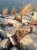 在岩石的亮光 库存图片