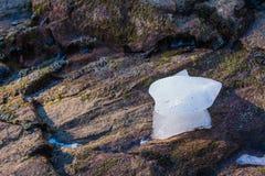 在岩石的冰 免版税图库摄影