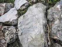 在岩石的化石标记 库存图片