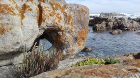 在岩石的孔在海洋 免版税库存图片