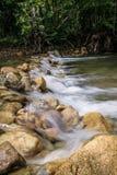 在岩石的小瀑布在森林里 库存照片