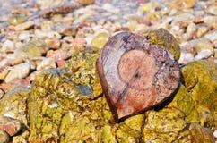 在岩石的心形的椰子壳 免版税库存图片