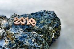 在岩石的木第2019年 免版税图库摄影