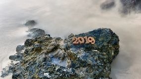 在岩石的木第2019年 免版税库存照片
