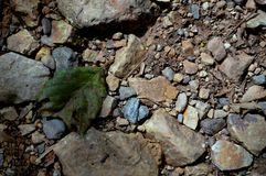 在岩石的板料 库存照片