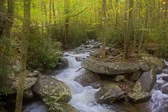 在岩石的柔滑的水在发烟性山 免版税图库摄影