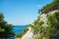 在岩石的树杉木在海 库存照片