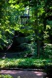在岩石的树荫处 库存图片
