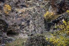 在岩石的秋天 库存图片