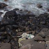 在岩石的考艾岛绳索 库存照片