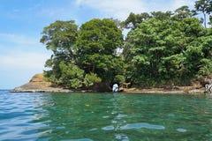 在岩石的自然洞在哥斯达黎加的海岸 图库摄影
