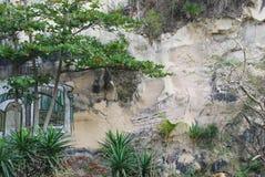 在岩石的街道画在纪念古巴革命的农村古巴 库存图片