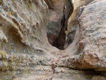 在岩石的裂缝 免版税图库摄影