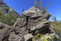 在岩石的错觉 在岩石的落的阴影形成的可看见的狗面孔形状 库存照片