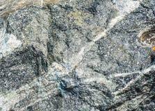 在岩石的静脉 库存照片