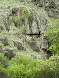 在岩石的面孔 免版税库存照片