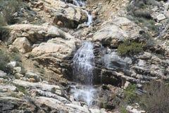 在岩石边缘, Lamoille峡谷 免版税库存照片