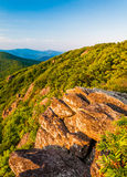 在岩石露头的晚上光和从阿巴拉契亚足迹的蓝岭山脉在Shenandoah国家公园 免版税库存图片
