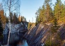 在岩石,秋天森林的树 库存图片