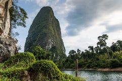 在岩石, Khao Sok国家公园的豪华的植被 库存图片