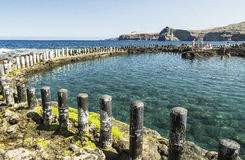 在岩石水池的清楚的水在Puerto de在大加那利岛的las Nieves 图库摄影