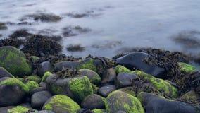 在岩石&海草旁边的长的曝光水 免版税库存照片