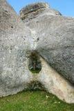 在岩石2的树 免版税图库摄影