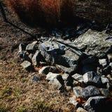 在岩石 库存图片