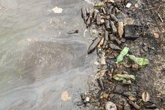 在岸古巴的发恶臭的油腻的垃圾 免版税图库摄影