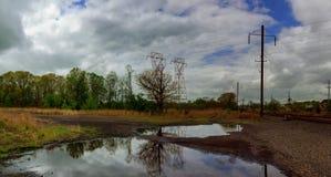 在岸和天空的黑暗和剧烈的暴风云地区树与雷云 免版税图库摄影